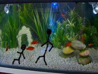 Thumb fish tank walker